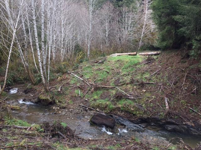 Hamilton Creek and the Coho Peak