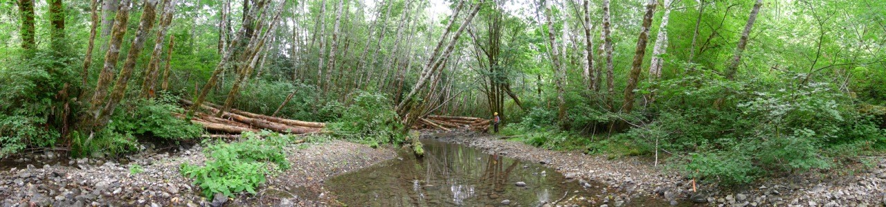 East Fork Mill Creek Structure After