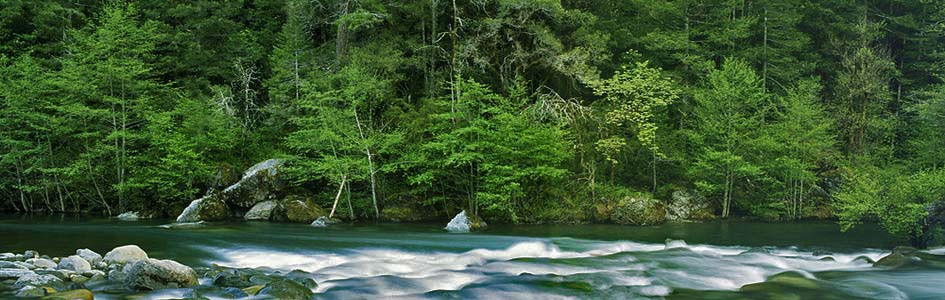 Protect the North Fork Smith River from New Mining Claims