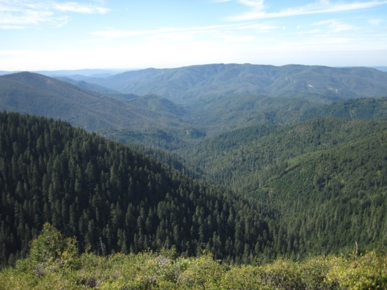bearbasin-lookout-5