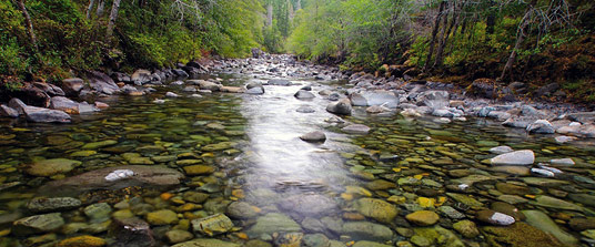 North Fork Smith – Instream Flow Protection