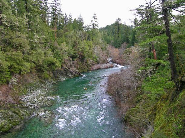 Hurdygurdy Creek