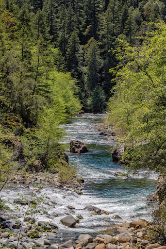 Oregon Agency Considering Water Quality Protection for Smith